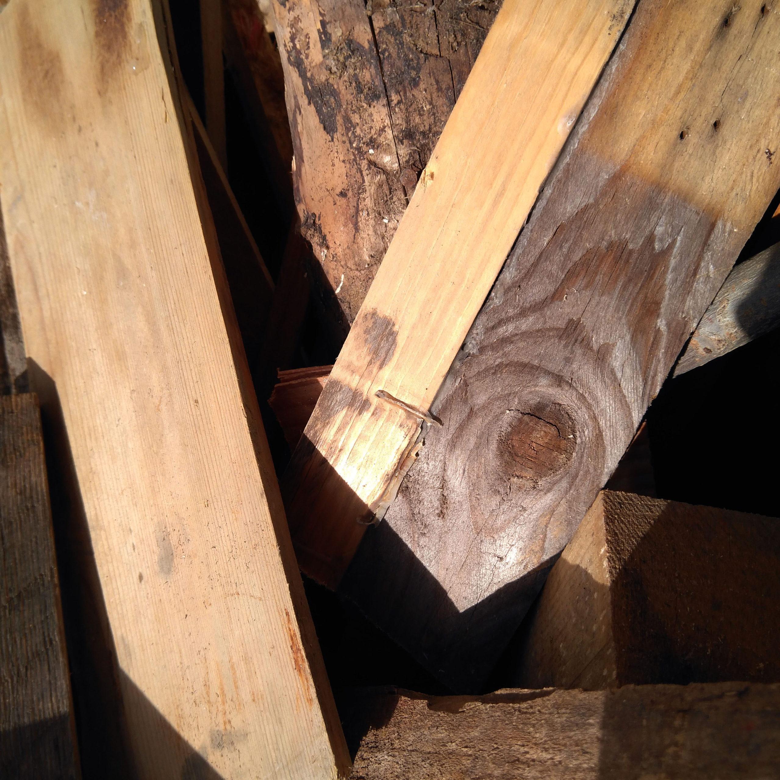 maderas varias